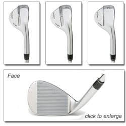Maltby Tricept MG Tech Wedge Views